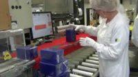 Anglia praca na produkcji od zaraz dla kobiet i mężczyzn w Stafford UK