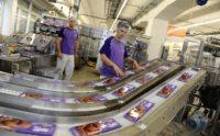 Bez znajomości języka oferta pracy w Holandii przy pakowaniu czekolady Zwolle