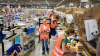 Waalwijk oferta pracy w Holandii na magazynie od zaraz przy zbieraniu zamówień