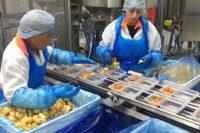 Oferta pracy w Holandii od zaraz dla par na produkcji żywności, Haga i Oss