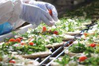 Vendee praca Francja bez znajomości języka na produkcji żywności od zaraz