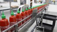 Dam pracę w Holandii przy produkcji dipów i sosów w fabryce z Giessen
