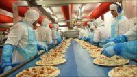 Bez znajomości języka praca w Holandii od zaraz na produkcji pizzy, ciastek Amersfoort