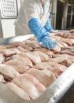 Dla par oferta pracy w Holandii bez języka przy pakowaniu i obróbce mięsa od zaraz, Haga