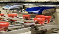 Bez znajomości języka praca w Norwegii dla par od na produkcji kremu nugatowego Oslo