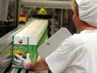 Pakowanie i produkcja żywności Finlandia praca od zaraz bez języka, Kannus 2019