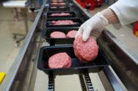 Haga, Holandia praca od zaraz bez znajomości języka przy pakowaniu żywności