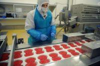 Bez znajomości języka produkcja żywności Finlandia praca od zaraz maj 2019, Kannus