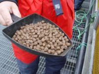 Dam pracę w Niemczech od zaraz pracownik produkcji granulatu spożywczego, Hamburg