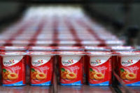 Od zaraz praca w Niemczech bez znajomości języka na produkcji jogurtów Stuttgart