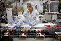 Dam pracę w Holandii dla par na produkcji spożywczej bez języka od zaraz w Hadze