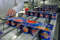 Bez znajomości języka dam pracę w Niemczech od zaraz na produkcji jogurtów Stuttgart