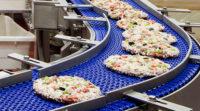 Ogłoszenie pracy w Holandii bez języka na produkcji pizzy od zaraz fabryka Bunschoten