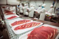 Praca w Walii od zaraz na produkcji mięsnej bez znajomości języka w Bangor