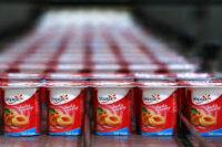 Produkcja jogurtów od zaraz oferta pracy w Danii bez języka w Kopenhadze