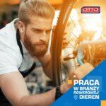Oferta pracy w Holandii bez języka przy produkcji rowerów od zaraz w Dieren