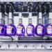 praca produkcja detergentow plynow do prania 2020 2i