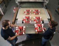 Operator maszyn do produkcji opakowań dam pracę w Holandii od zaraz, Bemmel