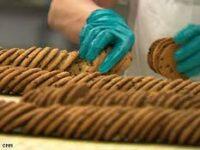 Bez znajomości języka praca Holandia od zaraz dla par produkcja ciastek, Panningen 2021